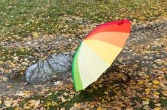 farbiger Regenschirm auf Herbstlaub Stockbild
