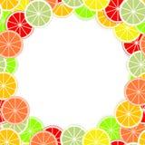 Farbiger Zitrusfruchthintergrund der frischen saftigen Orange des Schnittes, Kalk, Zitrone, Pampelmuse, Tangerine, Pampelmuse sch stock abbildung