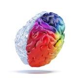 Farbiges Gehirn lizenzfreie abbildung