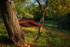 Farbiges Gewebe gammak an einem sonnigen Herbsttag stockfotografie