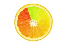 Farbiges orange slince Lizenzfreies Stockbild