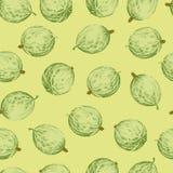Farbiges Stachelbeernahtloses Muster Stockbilder