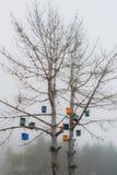 Farbiges Vogelhaus auf Baum stockfotos