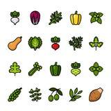 Farblinieikonensatz Gemüse Perfekte Ikonen des Pixels stock abbildung