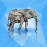 Farbpolygonaler Elefant lokalisiert auf blauem Hintergrund Auch im corel abgehobenen Betrag Stockfotos