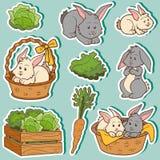 Farbsatz von netten Haustieren und von Gegenständen, Vektorkaninchen Stockbild