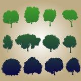 Farbsatzbäume des Vektor Illustration Stockbilder
