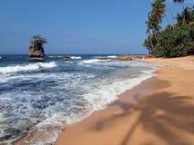 Farbton auf dem Strand Stockbild