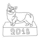 Farbton, Corgi steht auf einem Kasten, mit der Aufschrift 2018 Stockfotografie