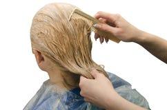 Farbton des Haares, lokalisiert Lizenzfreie Stockfotografie