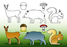 Farbton-wild lebende Tiere stockbild