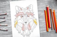 Farbtonbild für Erwachsene auf Draufsicht des hölzernen Hintergrundes Stockbilder
