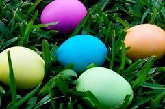 Farbujący Wielkanocni jajka w trawie Obraz Stock