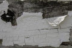 Farby płatkowanie Wietrzejący drewno Obrazy Stock