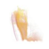 Farby pluśnięcia koloru atramentu akwarela odizolowywa wapna uderzenia splatter koloru żółtego menchii watercolour aquarel muśnię Zdjęcia Royalty Free
