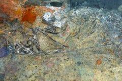 Farby splatter, plamy na podłogowym tle/ Obraz Royalty Free