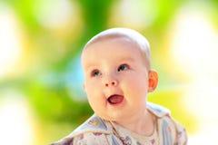 Fare da baby-sitter su erba verde Fotografia Stock