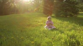 Fare da baby-sitter sull'erba nel parco stock footage
