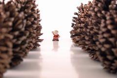 Farewell to Santa Claus Stock Photography