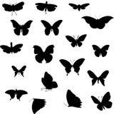Farfalla illustrazione di stock