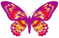 Farfalla 19 Fotografie Stock Libere da Diritti