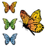 Farfalla Immagine Stock Libera da Diritti