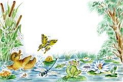 Farfalla, anatroccolo e rana Fotografia Stock Libera da Diritti