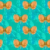Farfalla arancio Immagini Stock