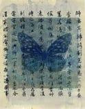 Farfalla asiatica Fotografia Stock