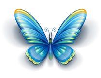 Farfalla blu con le ali di colore Fotografia Stock Libera da Diritti