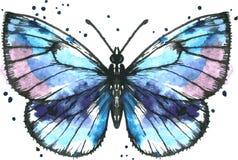 Farfalla blu di vettore in acquerello Fotografia Stock