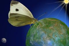 Farfalla cosmica Fotografie Stock