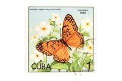 Farfalla del francobollo su bianco Fotografia Stock