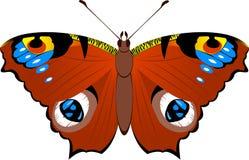 Farfalla del pavone Fotografia Stock Libera da Diritti