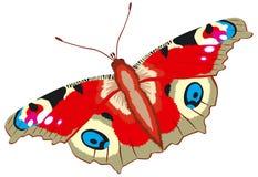 Farfalla del pavone, Inachis io, vettore Immagine Stock Libera da Diritti