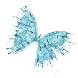 Farfalla dell'acqua isolata su fondo bianco Immagini Stock Libere da Diritti