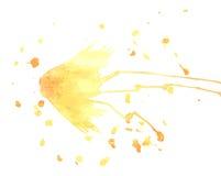 Farfalla dell'acquerello di vettore E Fotografia Stock Libera da Diritti