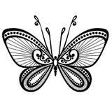 Farfalla dell'insetto Fotografia Stock