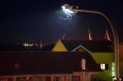 Farfalla della notte Fotografie Stock Libere da Diritti