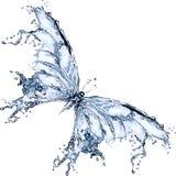Farfalla della spruzzata dell'acqua Immagine Stock Libera da Diritti