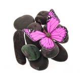 Farfalla di colore rosa caldo sulle pietre isolate su bianco Immagini Stock