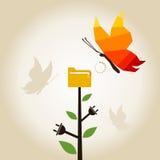 Farfalla di informazioni Immagine Stock