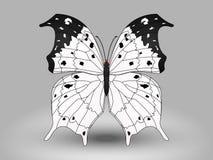 Farfalla di vettore Fotografie Stock Libere da Diritti