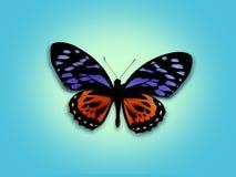Farfalla dolce Fotografia Stock Libera da Diritti