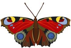 Farfalla esotica astratta. illustrazione vettoriale