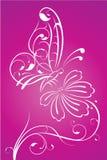 Farfalla floreale sul fiore Immagine Stock