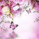 Farfalla, fondo floreale Fotografia Stock Libera da Diritti