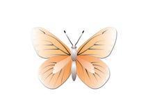 Farfalla isolata su priorità bassa bianca Immagine Stock Libera da Diritti