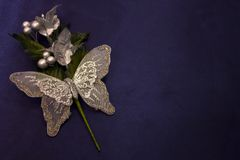 Farfalla lucida Fotografia Stock