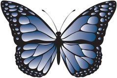 Farfalla modellata blu Fotografia Stock